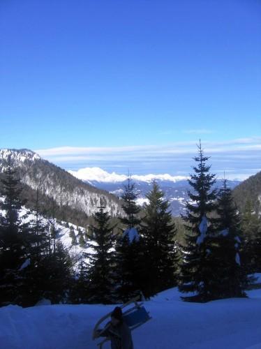 Soriška planina