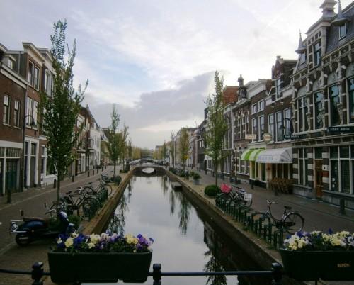 Rože, voda in bicikli
