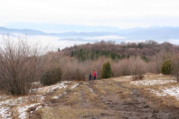 Travnike so zorali številni pobudniki