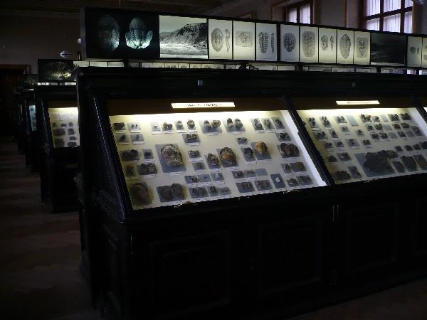 Paleontološka zbirka