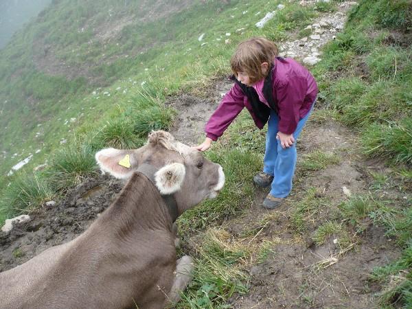 Ali niso v Švici vse Milke vijolične?