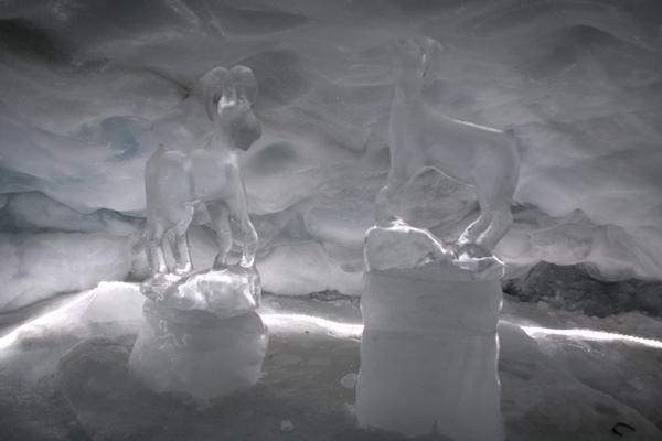 Ledena jama in prava forma viva