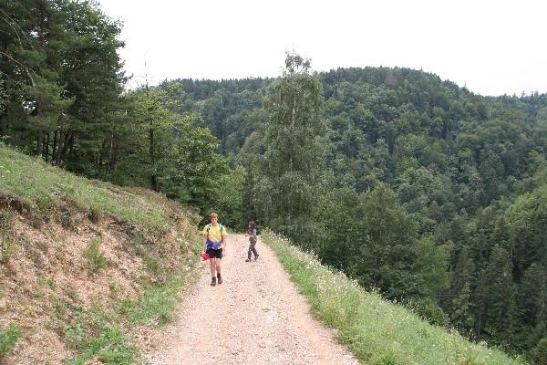 Pot proti Žavcarjevem vrhu