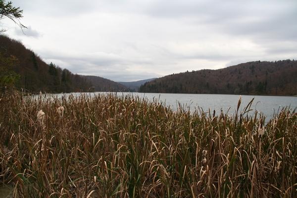 Proščansko jezero