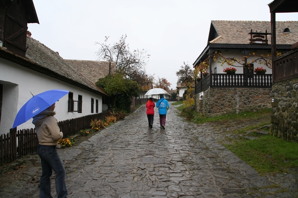 Vas Holloko