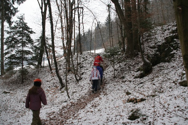 Zavili smo v gozd in izbrali stezo...