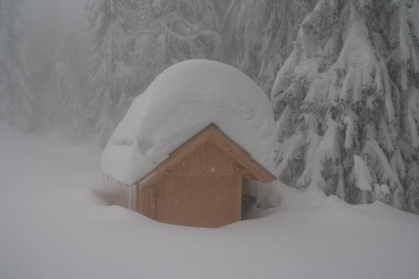 Snega je letos ogromno