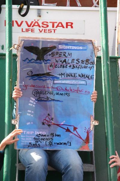 Podatki o poti in kitih, ki smo jih videli