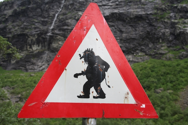 Pozor, troli na cesti!