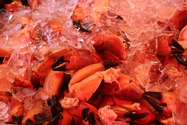 Rakove klešče na tržnici v Bergnu