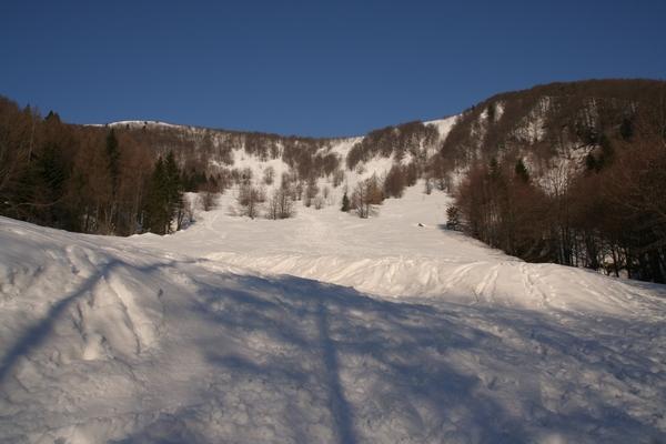 Travniki pod snegom