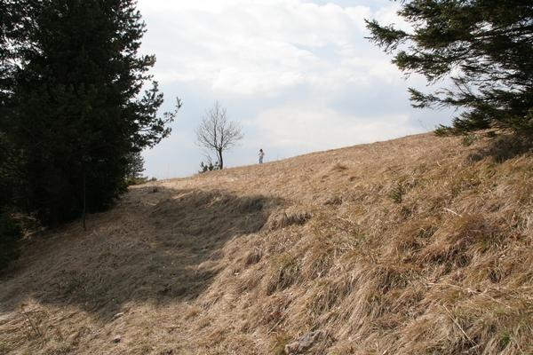 Prehod iz travnika na pot proti cerkvi