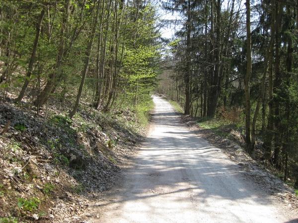 Makadamska pot proti Štefanji vasi