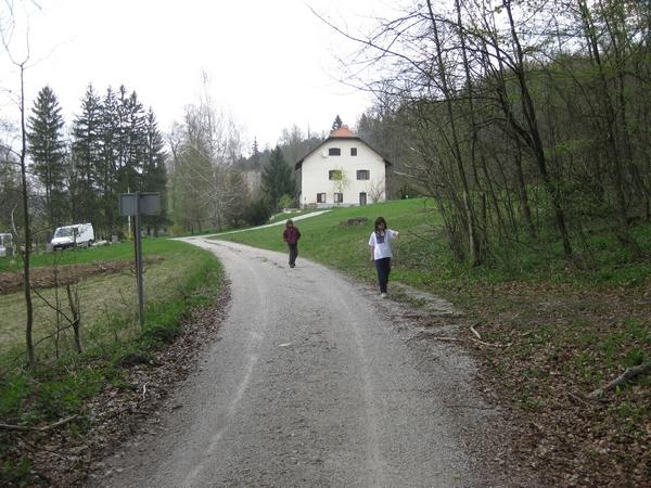 Pot proti koliševki