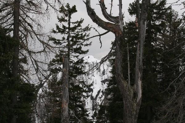 Pogled na Ciprnik iz vrha Vitranca
