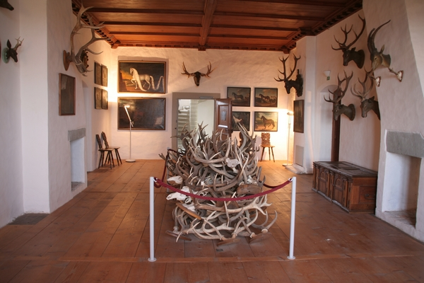 Skladovnica rogovja v lovski sobi