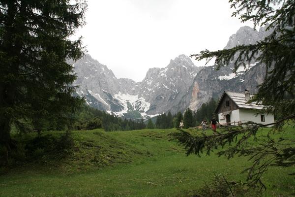 Iz zelenih travnikov se odpira pogled na snežišča pod Kriško steno