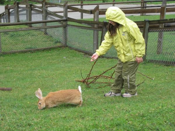 Zajček in Ajda