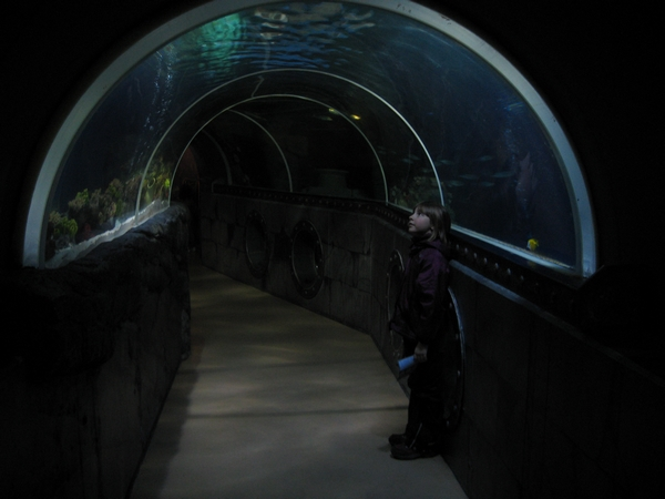 Podvodni tunel
