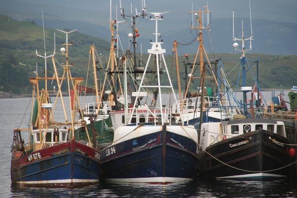 Ribiška flota v Ulapoolu