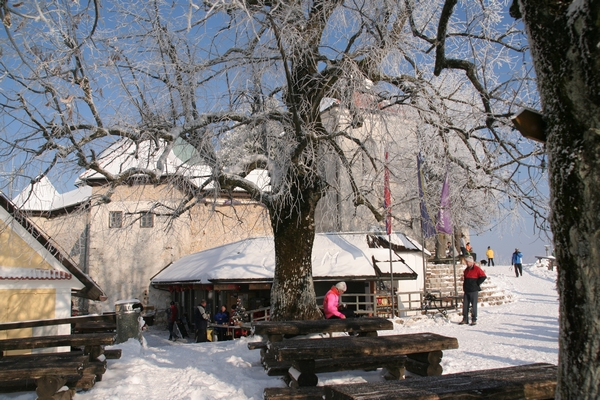 Ledinek in cerkev