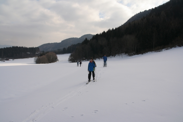 Travniki nad tekaško progo