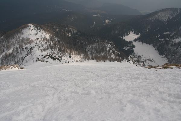 Plesišče in sleme proti vršnim pobočjem, desno planina Konjščica