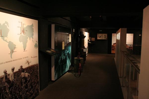 Muzej vina