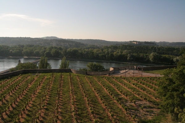 Pogled na Villeneuve-les-Avignon