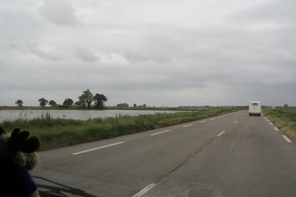 Vožnja ob riževih poljih