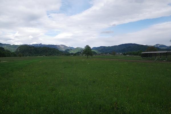 Pogled proti Bledu iz ceste proti Bodeščam
