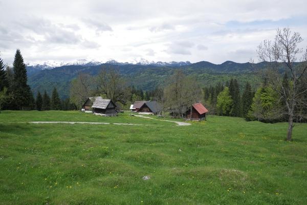 Pogled proti Bohinjskim goram