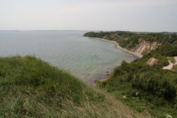 Zaliv pred vasico Vitt