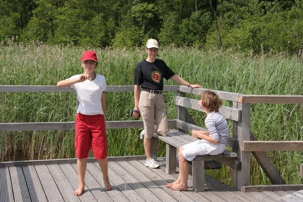 Leseni pomol ob robu jezera