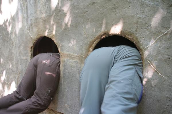 Vhod je več kot zanimiv