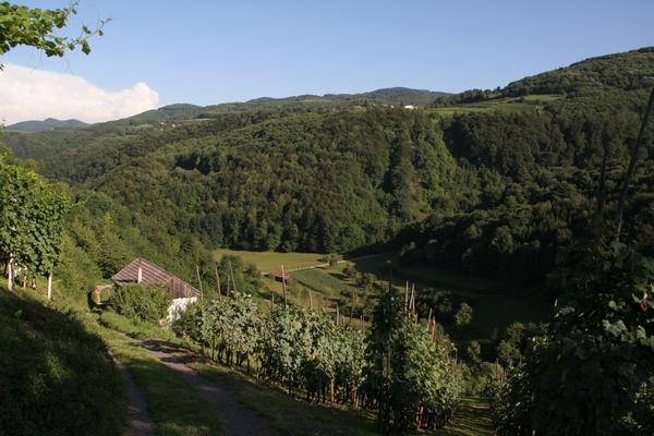 Dolina potoka Sušica
