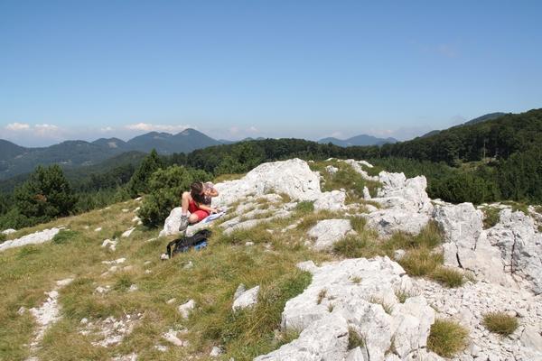 Prepišni vrh Trnovskega gozda