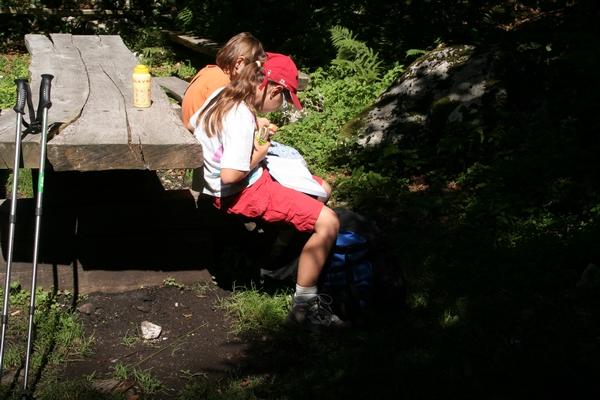 Malica ob robu travnika nad jamo