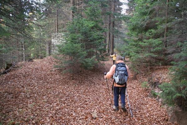 Pri nenavadni kapelici listje šumi pod nogami...