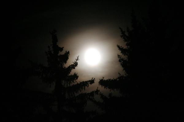 Noč ima svojo moč...