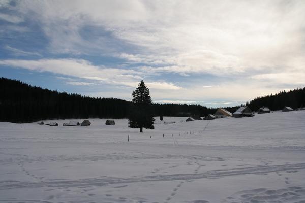 Planina Javornik
