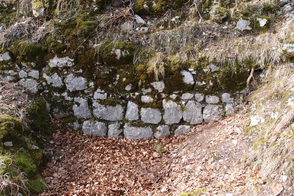 Zidovi Pustega gradu