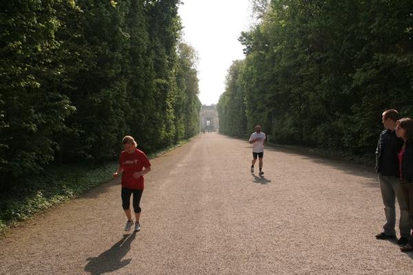 Jutranje trimčkanje po Schönbrunnu