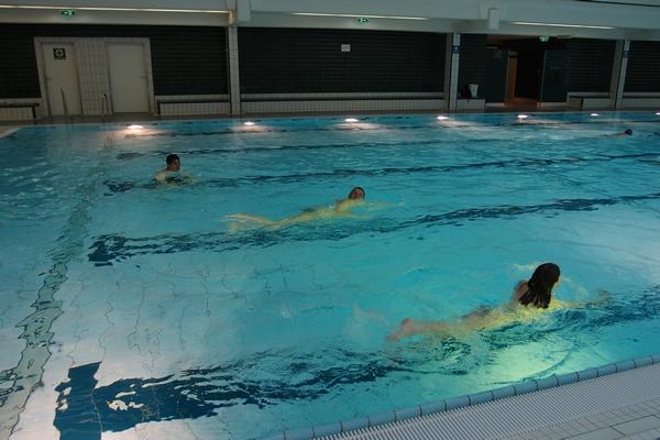 Slovenska plavalna reprezentanca